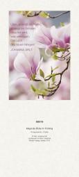 Rückwand zum Liturgischen Kalender - Magnolia Blüte