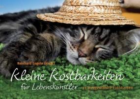 Kartenbuch: Kleine Kostbarkeiten für Lebenskünstler-Copy