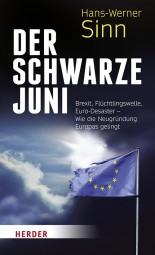Der Schwarze Juni - Brexit, Flüchtlingswelle, Euro-Desaster - Wie die Neugründung Europas gelingt