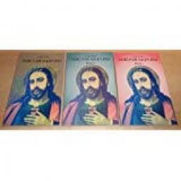 Durch die Augen Jesu - Band 1