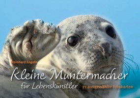 Kartenbuch: Kleine Muntermacher für Lebenskünstler